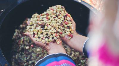 Хороший кофе для киевлян от Меркато - обжарим и доставим